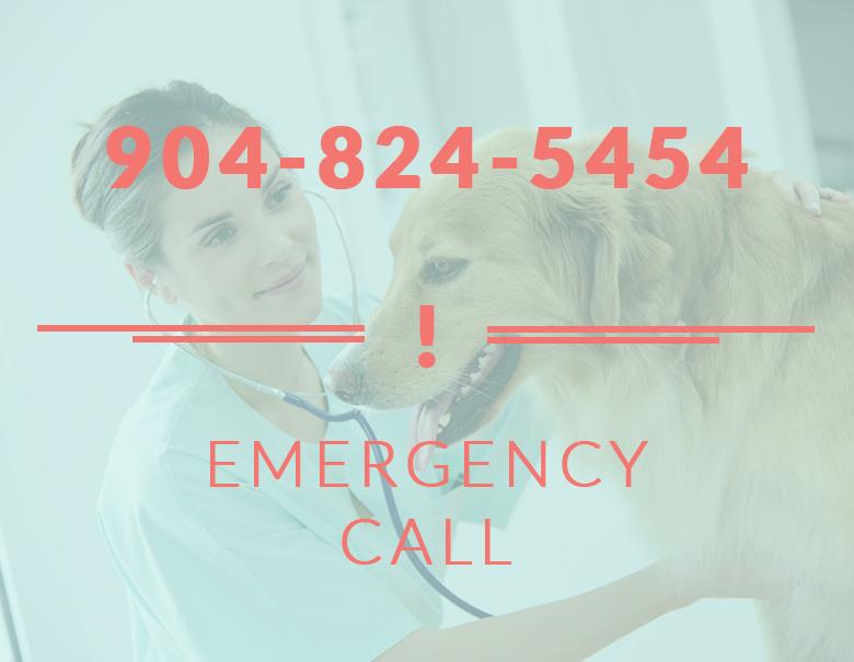 Emergency Care