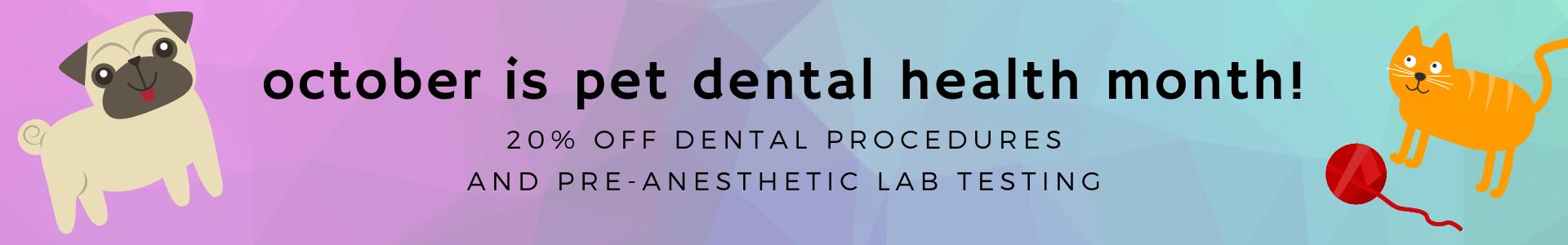 october is pet dental health month!